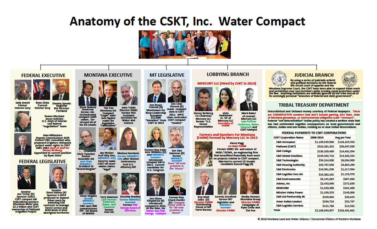 CSKT Anatomy Organization Chart of Taking